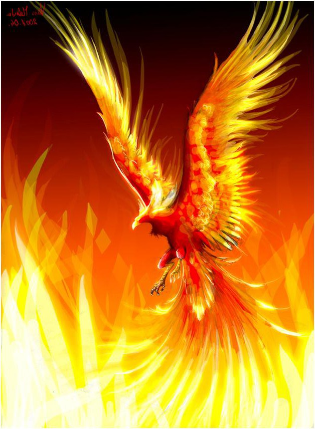 Phoenix Rising From The Ashes Of Boulder Manor Homelessphilosopher